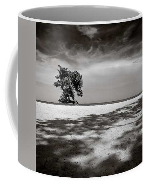 Tree Coffee Mug featuring the photograph Beach Tree by Dave Bowman