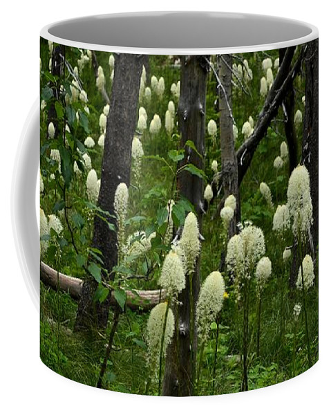 Bear Grass Coffee Mug featuring the photograph Bear Grass by Whispering Peaks Photography