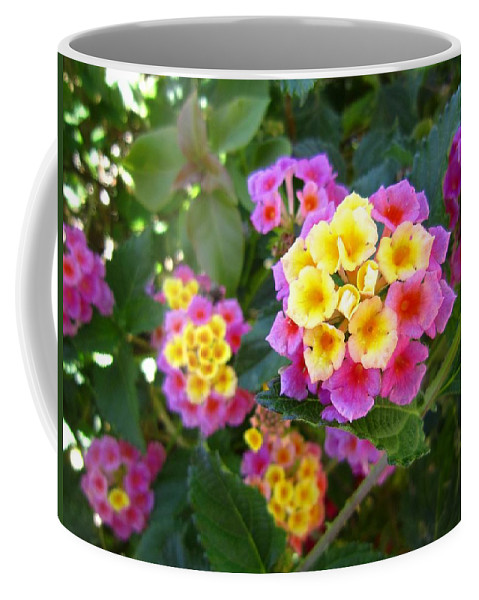 Flower Coffee Mug featuring the photograph Beaucoup Of Blooms by Nelson Strong