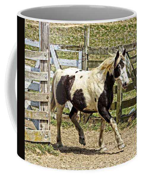 Horse Coffee Mug featuring the photograph Beautiful Boy by Alice Gipson