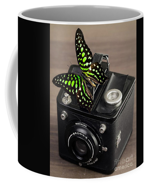 Butterfly Coffee Mug featuring the photograph Beautiful Butterfly On A Kodak Brownie Camera by Edward Fielding