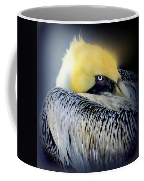 Pelicans Coffee Mug featuring the photograph Beautiful Dreamer by Karen Wiles