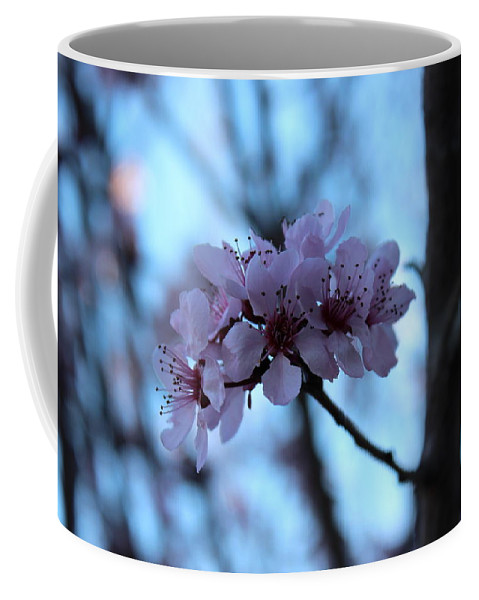 Plum Blossoms Coffee Mug featuring the photograph Beautiful Dreamer by Kume Bryant