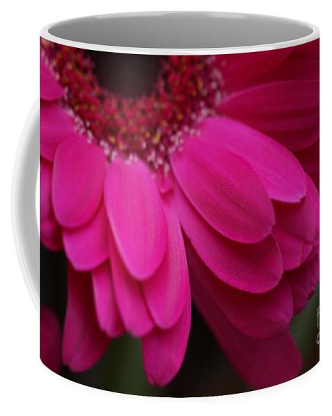 Pink Coffee Mug featuring the photograph Beautiful Petals by Carol Lynch
