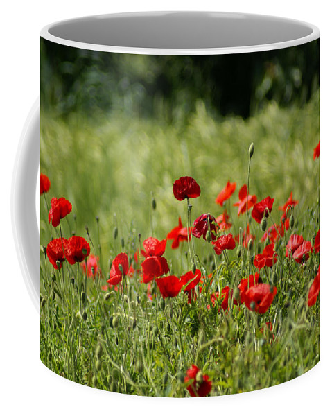Poppies Coffee Mug featuring the photograph Beautiful Poppies 3 by Carol Lynch