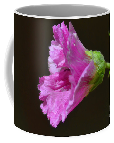 Fine Art Coffee Mug featuring the photograph Beautiful Purple Flower by Donna Greene