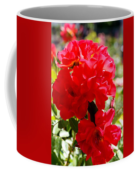 Beautiful Red Roses Coffee Mug featuring the photograph Beautiful Red Roses by Cynthia Woods