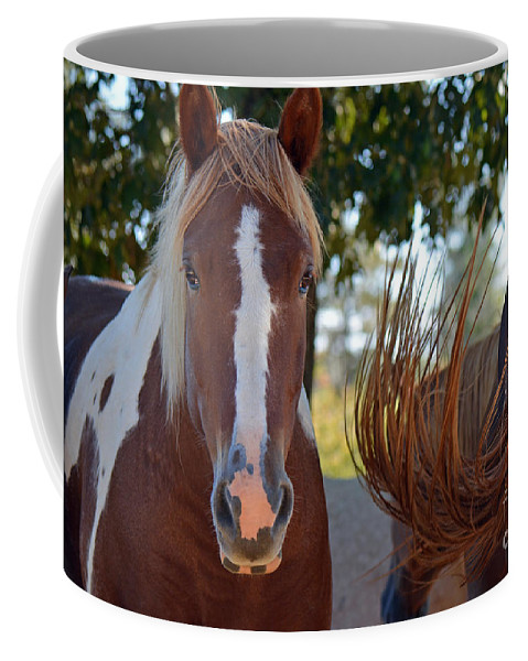 Horses Coffee Mug featuring the photograph Beauty And The Swish by Barb Dalton