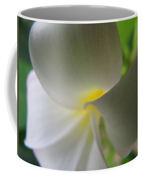 Plumeria Coffee Mug featuring the photograph Beauty by Beth Vincent