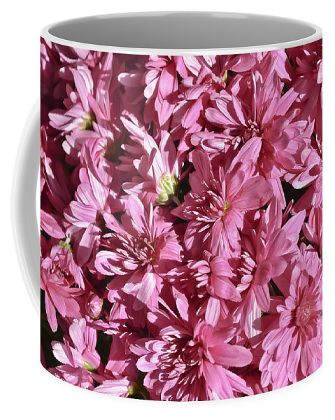 Plants Coffee Mug featuring the photograph Beauty Of Pink by Elvis Vaughn