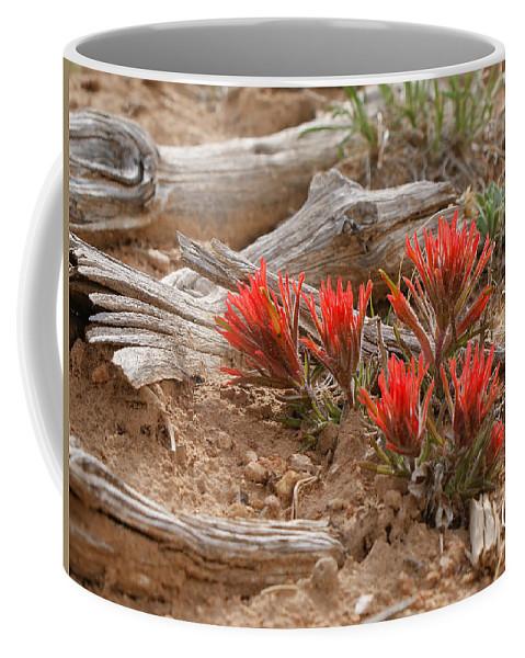 Beauty On 25 Mesa Coffee Mug featuring the photograph Beauty On 25 Mesa by Ernie Echols