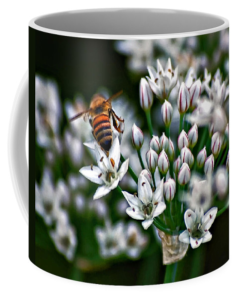 Bee Coffee Mug featuring the photograph Because by Steve Harrington