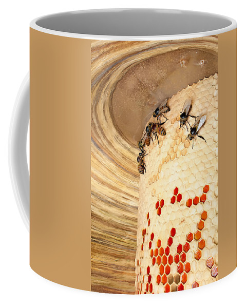 Activity Coffee Mug featuring the photograph Bee Hive by Alex Grichenko