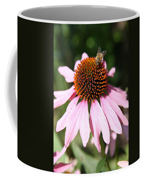 Coneflower Coffee Mug featuring the photograph Bee On Coneflower by Christiane Schulze Art And Photography