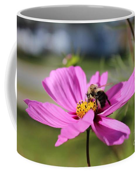 Bee Coffee Mug featuring the photograph Bee On Flower by Tabitha Godin