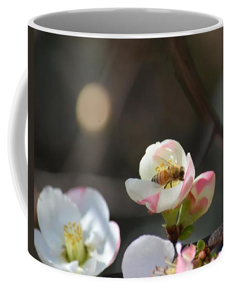 Bee On Japanese Quince Coffee Mug featuring the photograph Bee On Japanese Quince by Maria Urso