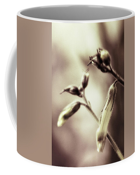 Nicotiana Coffee Mug featuring the photograph Beginnings by Caitlyn Grasso