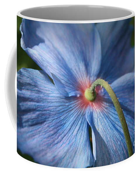 Blue Poppy Coffee Mug featuring the photograph Behind The Blue Poppy by Carol Groenen