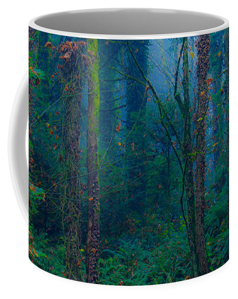 Forest Coffee Mug featuring the photograph Believe by Don Schwartz