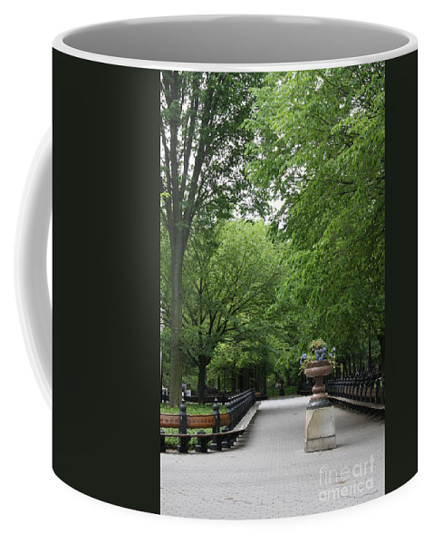 Park Coffee Mug featuring the photograph Bench Rows In Central Park Nyc by Christiane Schulze Art And Photography