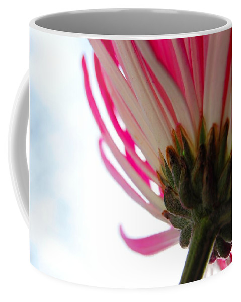 Flower Coffee Mug featuring the photograph Beneath by Alea Photography