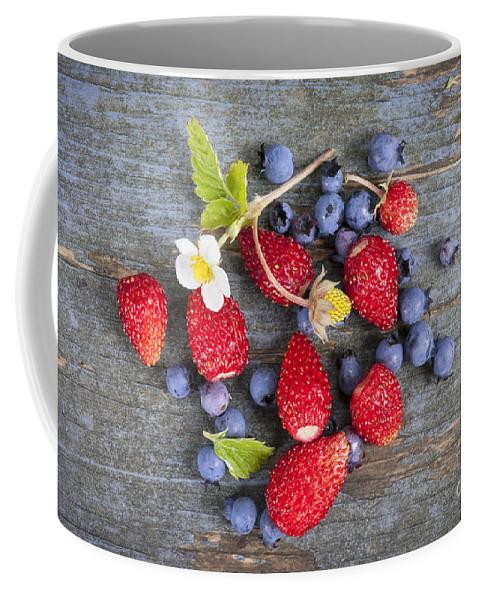 Berries Coffee Mug featuring the photograph Berries On Rustic Wood by Elena Elisseeva