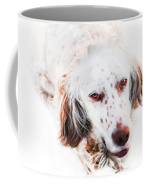 Dog Coffee Mug featuring the digital art Best Friend by Gina Dsgn