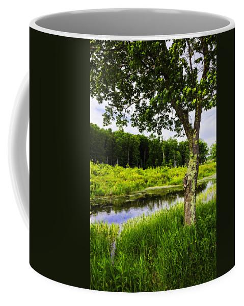 Landscape Coffee Mug featuring the photograph Bethel Landscape 3 by Madeline Ellis