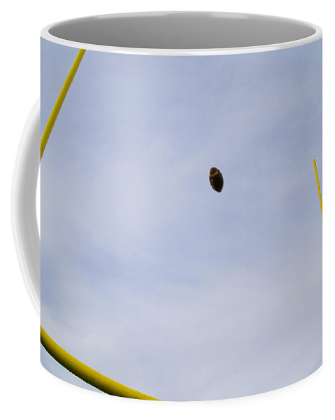 Field Coffee Mug featuring the photograph Between The Posts by Bill Cannon