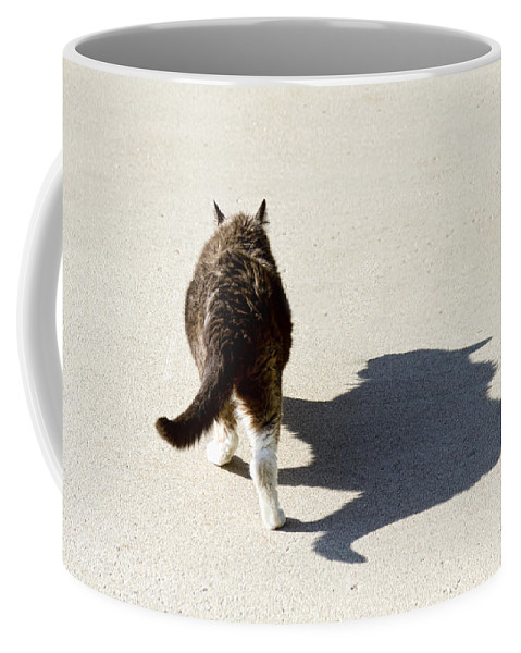Cat Coffee Mug featuring the photograph Big Cat Ferocious Shadow by James BO Insogna