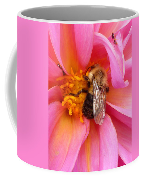 Flower Coffee Mug featuring the photograph Billy B Dahlia and company by Lingfai Leung
