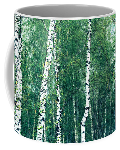 Abstract Coffee Mug featuring the photograph Birch Forest - Green by Hannes Cmarits