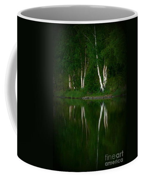 Birch Coffee Mug featuring the photograph Birch Reflection by Rick Monyahan