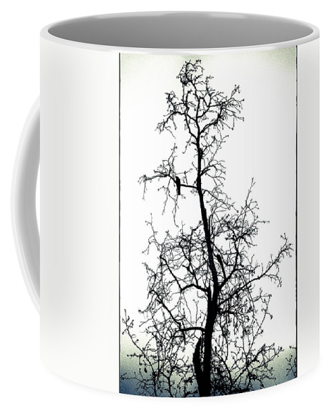 Silhouette Coffee Mug featuring the photograph Bird In The Branches by Caitlyn Grasso
