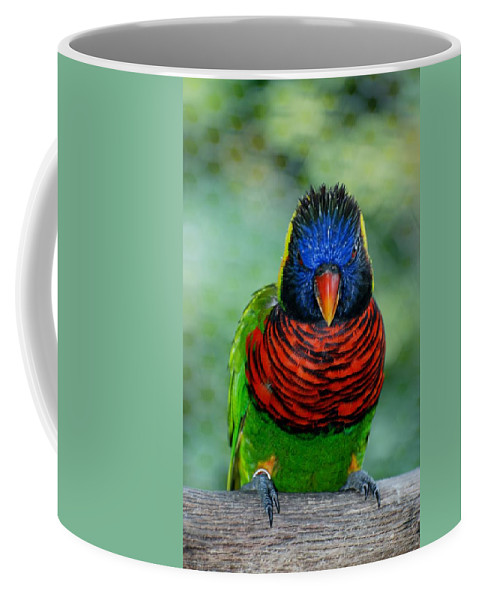 Macaws Coffee Mug featuring the photograph Bird In Your Face by Rob Hans
