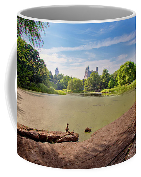 Duck Coffee Mug featuring the photograph Birds Eye View by Madeline Ellis