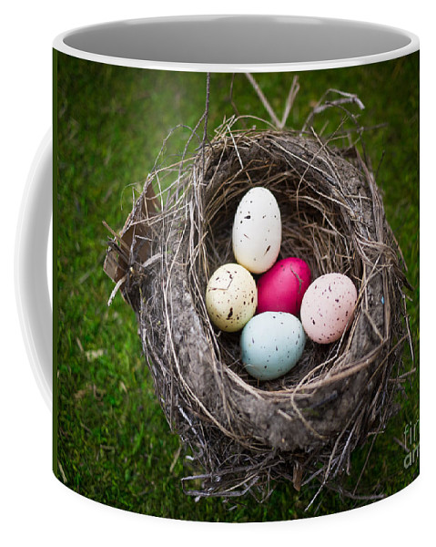 Nest Coffee Mug featuring the photograph Bird's Nest With Easter Eggs by Edward Fielding