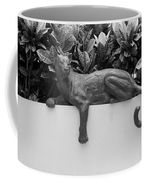 Cat Coffee Mug featuring the photograph Black And White Cat by Rob Hans