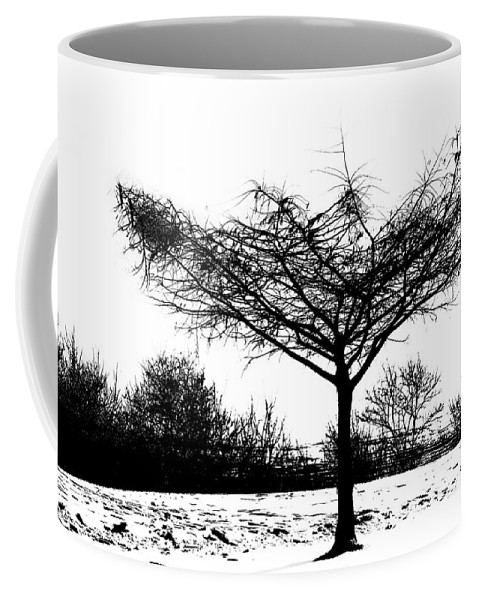 Trees Coffee Mug featuring the photograph Black And White by Debbie Nobile