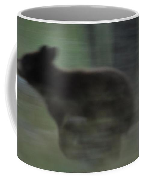 Black Bear Coffee Mug featuring the photograph Black Bear Cub Running by Frank Madia