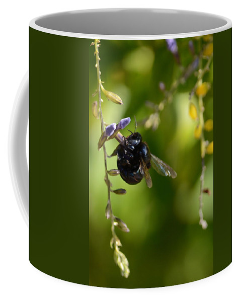Black Coffee Mug featuring the photograph Black Bumblebee by Debra Martz