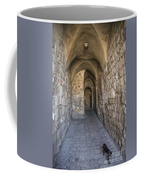 Ancient Coffee Mug featuring the photograph Black Cat In Jerusalem Israel by Jacek Malipan