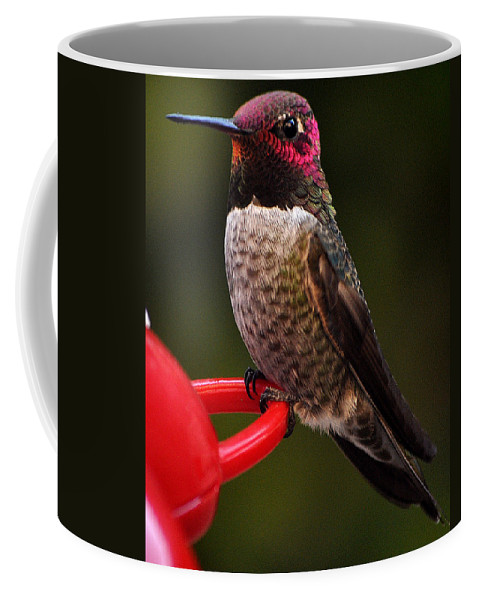 Black Chinned Coffee Mug featuring the photograph Black Chinned Male Hummingbird by Jay Milo