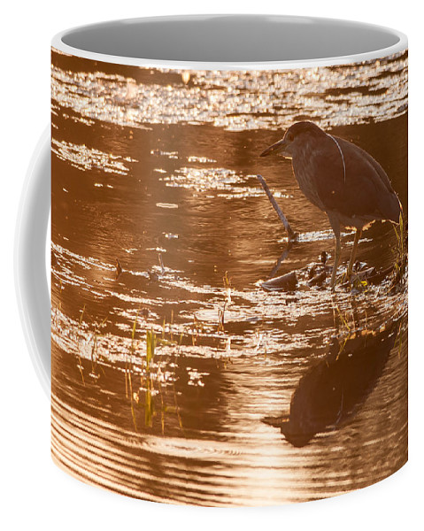 Black-crowned Coffee Mug featuring the photograph Black-crowned Night Heron Sunset by Richard Kitchen