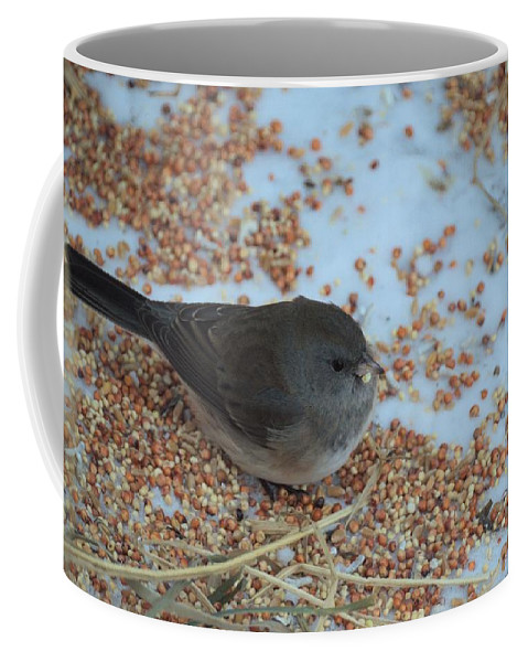 Bird Coffee Mug featuring the photograph Black Eyed Junco by Bonfire Photography
