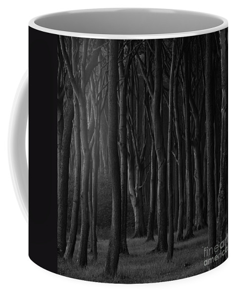 Trees Coffee Mug featuring the photograph Black Forest by Heiko Koehrer-Wagner