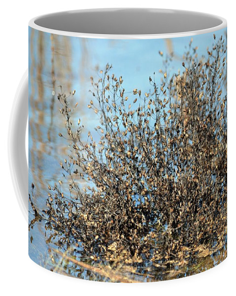Blackened Gold Coffee Mug featuring the photograph Blackened Gold by Maria Urso