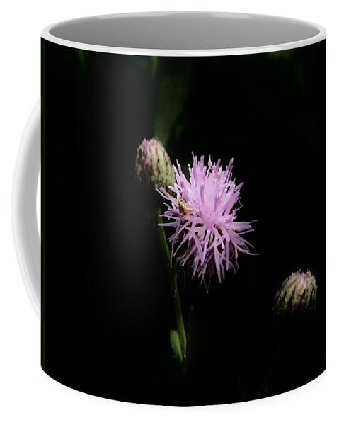 Rough Blazing Star Coffee Mug featuring the photograph Blazing Star by Eric Noa