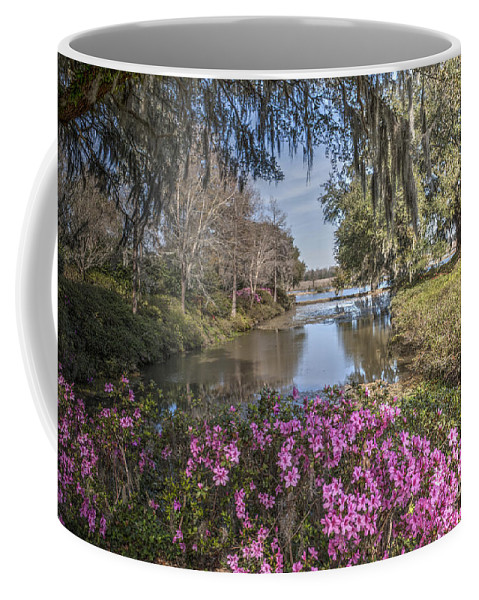 Water Coffee Mug featuring the photograph Blooming Azaleias At Middleton Place Plantation by Dale Powell