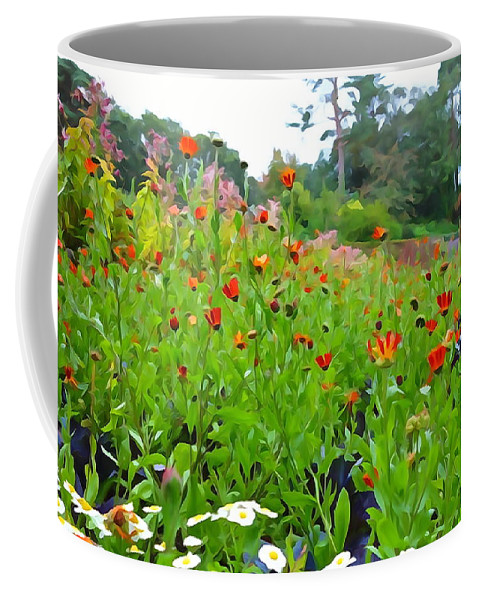 Poppy Coffee Mug featuring the photograph Blooming Beauties by Charlie and Norma Brock